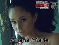 Cherrypimps Payment Form s0