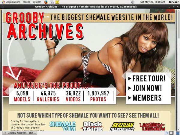 Thegroobyarchives Bypass